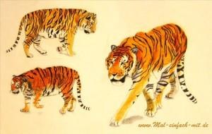 Skizze Zeichnung Tiger