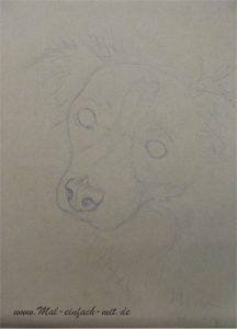 Hund Zeichnung Skizze